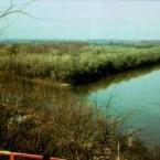 river-tisza-the-bodrog